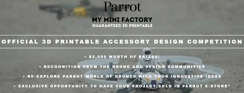 Parrot-Competition-01