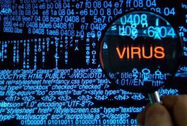 Virus-New-01