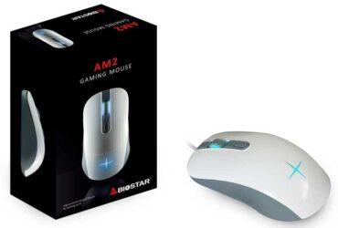 biostar-am2-01