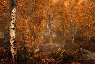 game-forest-4k-new