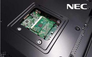 nec-display-raspberry-p