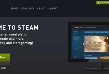 Valve-Steam-New