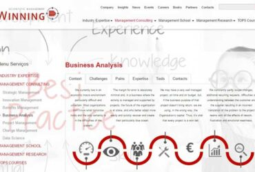 Business-Analysis-WINNING