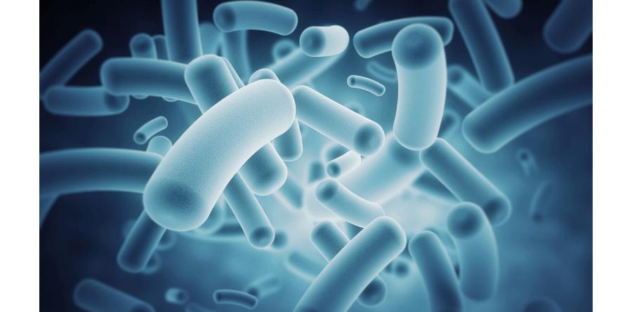 IBM-Microbiome-Immunity-Pro