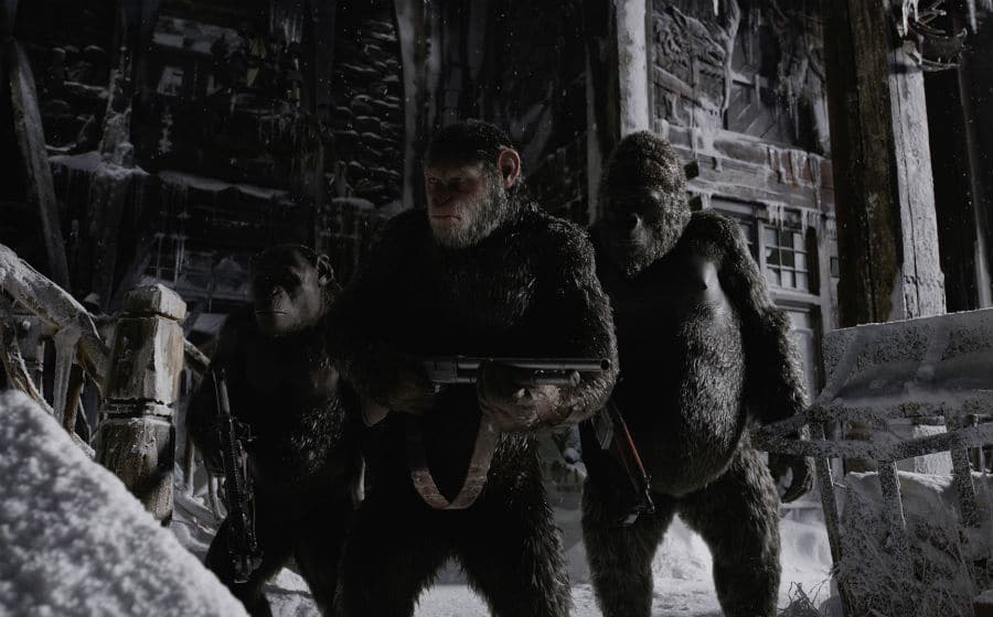War for the planet of the apes - filmes descarregados