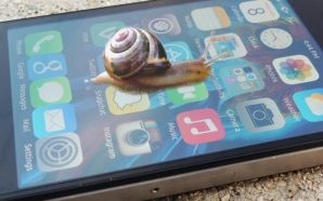 Apple Caracol