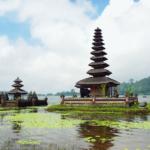 Indonesia Nec New