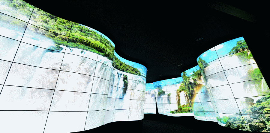 LG OLED Canyon New