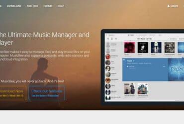 Passo 1 - organizar música Musicbee