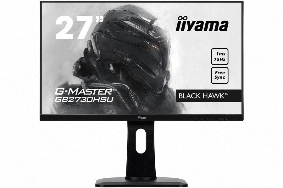 Iiyama G-Master Black Hawk