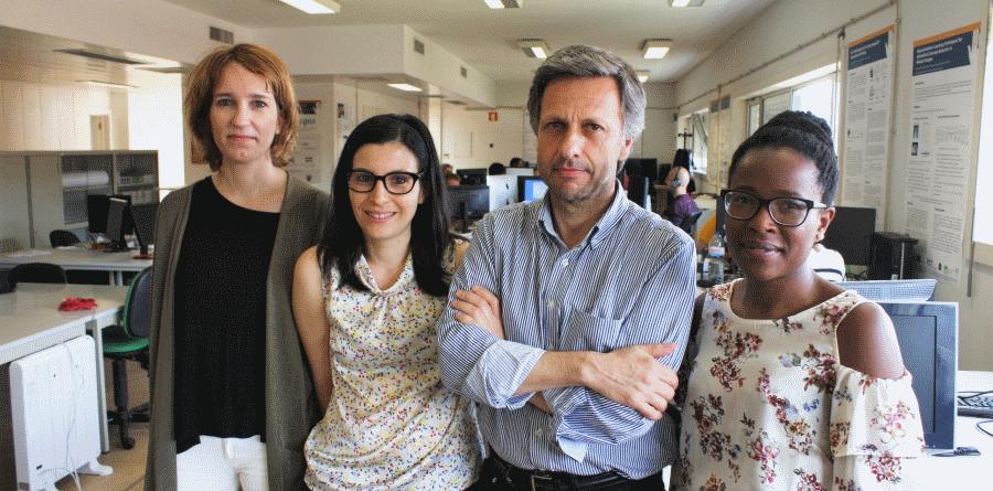Investigadores da Universidade de Aveiro