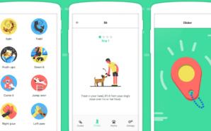 App do Dia – Dogo