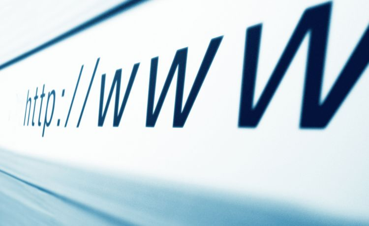 Web New