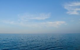 Ocean New